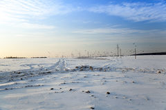 ground near the poles Stock Images