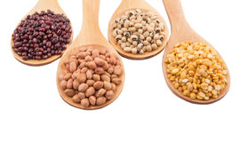 Ground Nut, Bean And Lentils I. Ground nut, dal lentils, black eye bean and adzuki bean on wooden spoon Royalty Free Stock Images