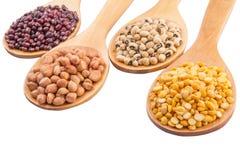 Ground Nut, Bean And Lentils II. Ground nut, dal lentils, black eye bean and adzuki bean on wooden spoon Stock Photo