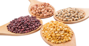 Ground Nut, Bean And Lentils IV. Ground nut, dal lentils, black eye bean and adzuki bean on wooden spoon Royalty Free Stock Image
