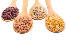 Ground Nut, Bean And Lentils V Stock Photos