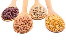 Ground Nut, Bean And Lentils V. Ground nut, dal lentils, black eye bean and adzuki bean on wooden spoon Stock Photos