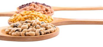 Ground Nut, Bean And Lentils VIII Royalty Free Stock Image