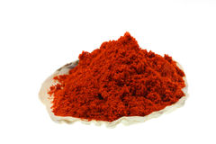 Ground paprika sea shell Royalty Free Stock Photo