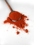 Ground paprika Stock Images