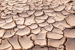 The ground parched and cracked Stock Image