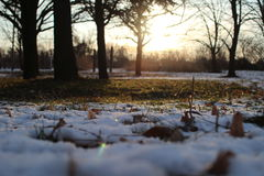 Ground in the park,covered with snow Stock Photography