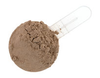 Ground plant protein in a measuring scoop Stock Images