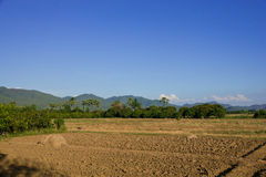 Ground preparation. Planting rice in thailand royalty free stock image