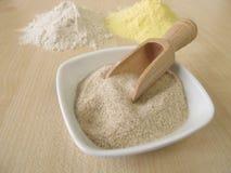Ground psyllium seed husks, maize flour and buckwheat flour royalty free stock images