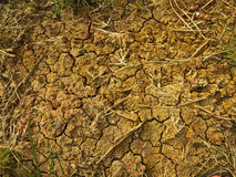 Ground red clay are broken down. The clay hardens, and a sunburn as a pattern Royalty Free Stock Photo