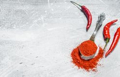Ground red pepper in a spoon with fresh pepper pods royalty free stock photos