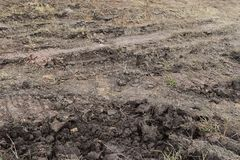 Ground reddish brown with and the wheels of the tractor. A mixture of fertilizer and grass Stock Photography