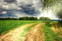 Ground road between a birch tree and agriculture field. Summer rural nature. Countryside landscape, sunlight, cloudy sky. Natural photo Royalty Free Stock Images