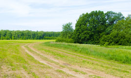 Ground road. A dirt road passes between fields and forests Stock Images