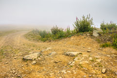 Ground road in fog. Dirt ground road with rocks in the misty mountains Stock Photography