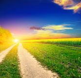 Ground road in the summer field Royalty Free Stock Photos