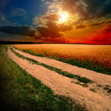 Ground road at sunset Royalty Free Stock Image