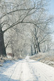 Ground road in winter Royalty Free Stock Photography