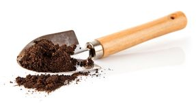 Ground in the small shovel isolated stock images
