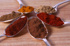 Ground Spice Close-Up. Six different spice powders in silver spoons on a wooden chopping board Royalty Free Stock Photos