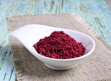 Ground sumac Royalty Free Stock Photos
