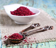 Ground sumac Royalty Free Stock Images