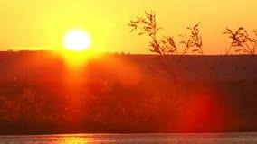 Ground Sunset stock footage