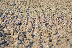 Ground Texture Background. Cultivated Land. Soil Background. Ground Texture Background. Cultivated Fertile Land. Soil Background Stock Photos
