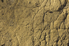 Ground texture. Detail of dark yellow ground with cracks on the surface Royalty Free Stock Photography