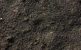 Ground texture Stock Photography