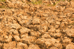 The ground water in the parched Royalty Free Stock Image