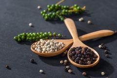 Ground white and black pepper. Close-up of ground black pepper in wooden spoon on black table stock images
