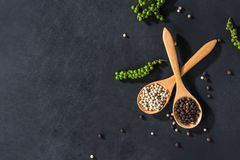 Ground white and black pepper. In wooden spoon on black table decorated with pepper corn, top view royalty free stock photo