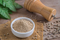 Ground white pepper in bowl and pepper shaker. Ground white pepper in a bowl and pepper shaker stock photos