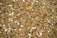 Groundbait in voedermethode wordt gebruikt in visserij om vissen te voeden die stock afbeelding