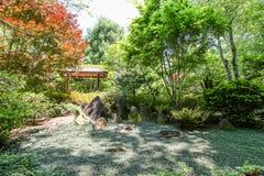 Groundcover no jardim japonês Imagens de Stock Royalty Free