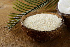 Grounded coconut flakes Royalty Free Stock Images