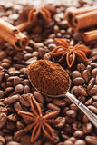 Grounded coffee in silver spoon with cinnamon and star anise Royalty Free Stock Photos