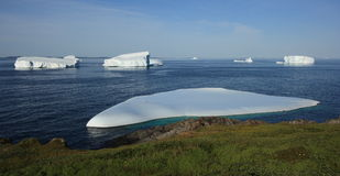 Grounded Icebergs in Goose Cove Royalty Free Stock Images