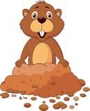 逗人喜爱的groundhog动画片 图库摄影