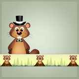 groundhog Immagine Stock
