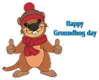 Groundhog and blue inscriptions Royalty Free Stock Photos