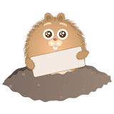 Groundhog Day 1 Stock Images