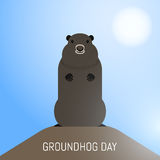Groundhog Day February 2nd vector illustration Royalty Free Stock Image