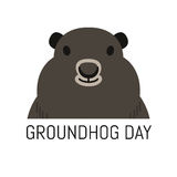 Groundhog Day February 2nd vector illustration Stock Photography