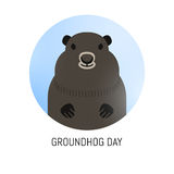Groundhog Day February 2nd vector illustration Royalty Free Stock Photography