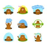 Groundhog day happy logo icons set, flat style. Groundhog day happy logo icons set. Flat illustration of 16 Groundhog day happy logo vector icons for web Vector Illustration