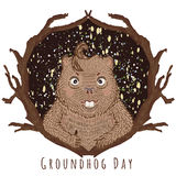 Groundhog Day-Illustration Lizenzfreies Stockfoto