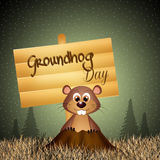 Groundhog day Stock Photography